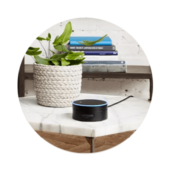 DISH Hands Free TV - Control Your TV with Amazon Alexa - Freeland, WA - Whidbey Telecom - DISH Authorized Retailer
